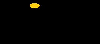 iconext logo